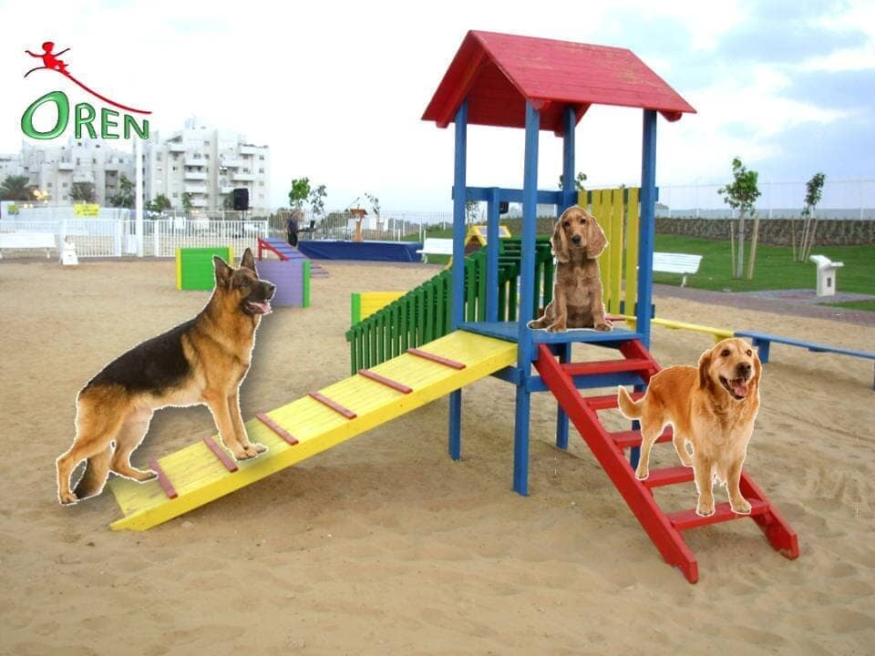 Dog Traning Equipment